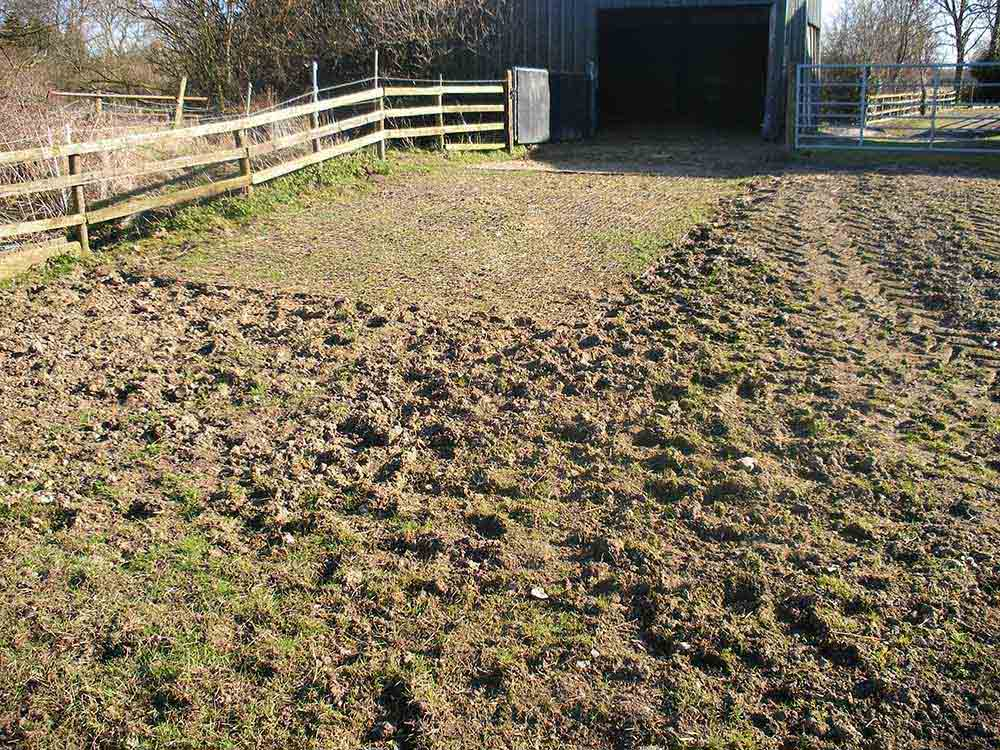 Ecogrid was installed to provide sure footing for access in and out of the paddock.