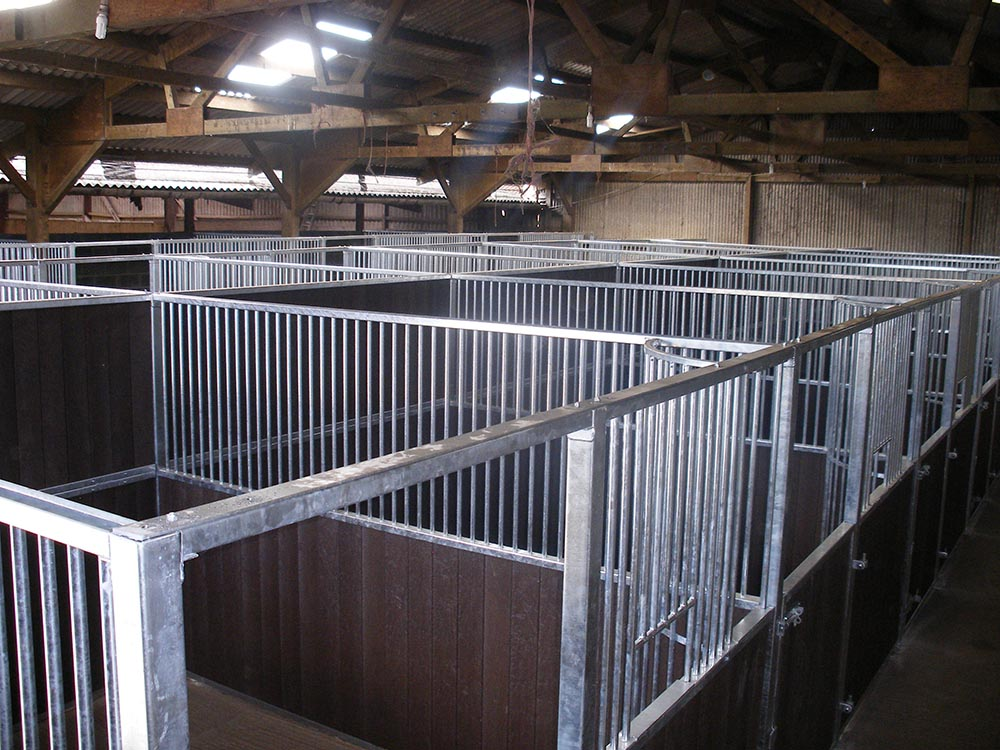'Premier' stables for a livery and showing yard near Northallerton